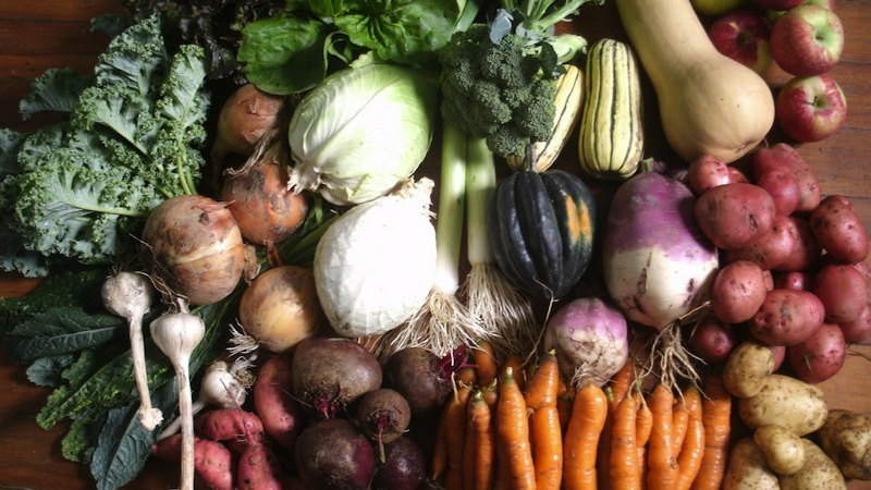Healthy Indian Winter Vegetable Recipes