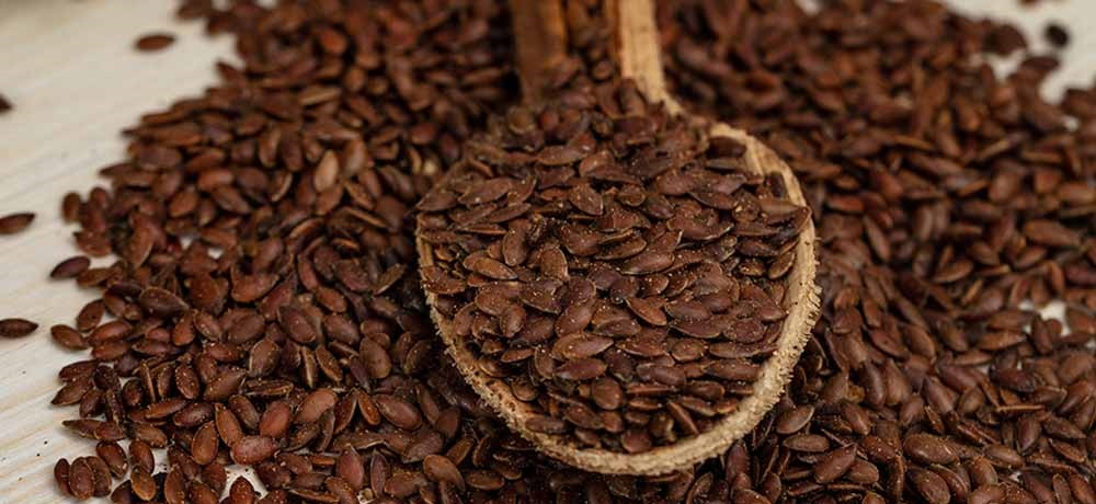 Lesser Known Benefits of Flaxseed (Alsi)