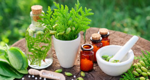 Diabetes & Homeopathy Decoding Relation Between The Two
